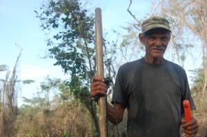 Don Efraín cuidando a su cultivo de arroz
